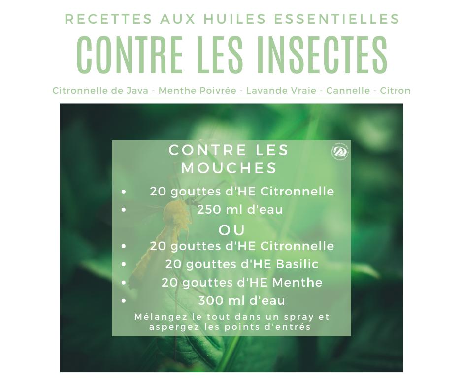 Recette huile essentielle contre les mouches