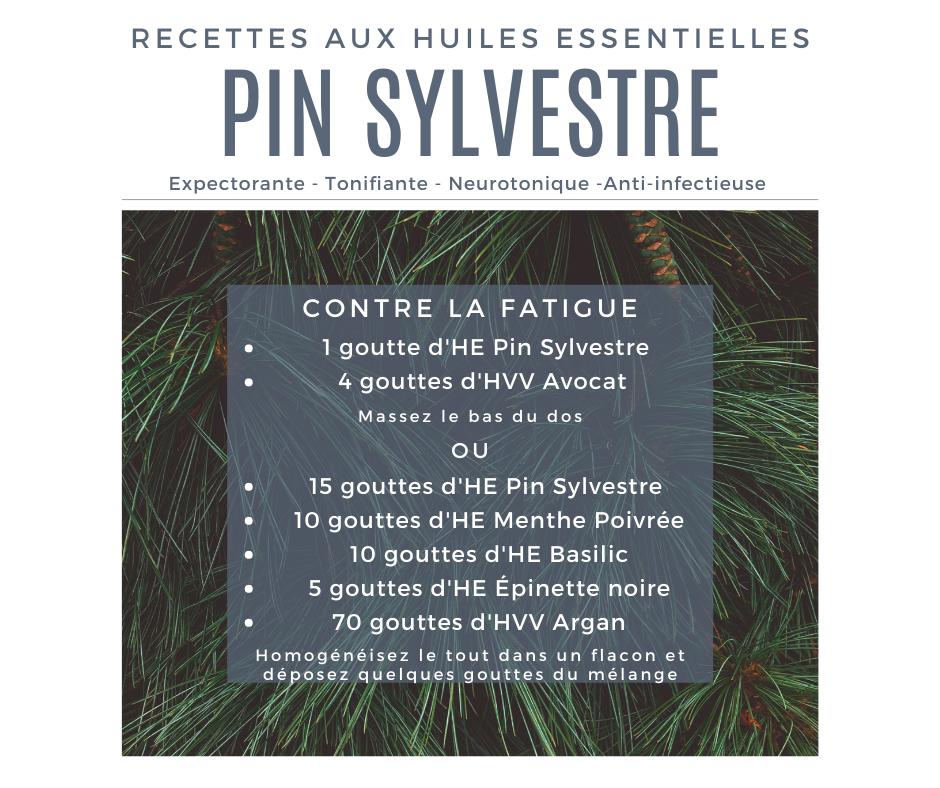 Recette huile essentielle pin Sylvestre contre la fatigue